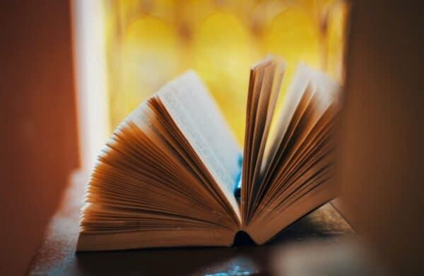 Objavljen razpis za nagrado Slovenskega knjižnega sejma za literarni prvenec