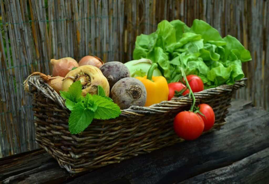 Preoblikovanje svetovnih prehranskih sistemov